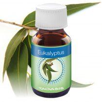 VENTA illóolaj, 3x50 ml - Eukaliptusz illat