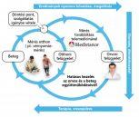 Egészséggondozási szolgáltatás
